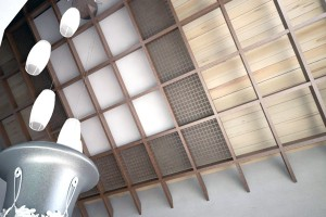Дизайн проект интерьера частного дома. г.Мукачево